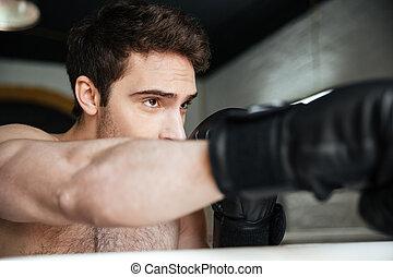 figyelmes, bokszoló, portraitof, gyártás, erős, megrúg