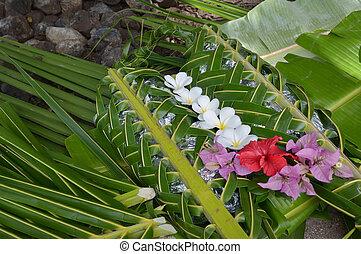 fijian, cibo, lovo, in, isole fiji