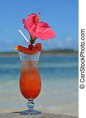 fijian, cocktail, servito, su, uno, spiaggia, in, figi