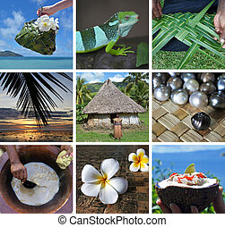 Fijian collage
