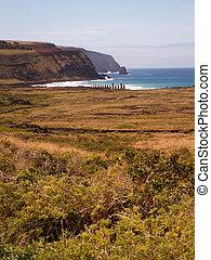 fila, de, moai, por, mar, retrato