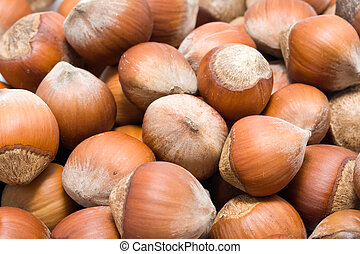 Filbert nuts background