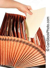 file folder - filing papers