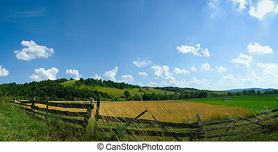 Fileld panorama in summer - Panoramic view of wheat field ...