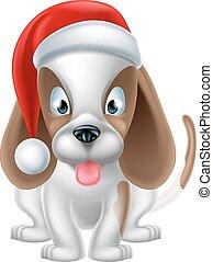 filhote cachorro, chapéu, cão, santa