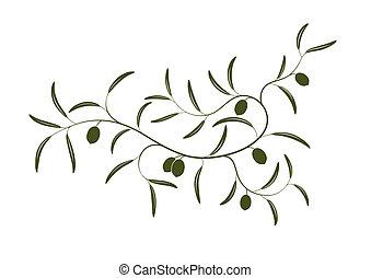 filiálka, oliva
