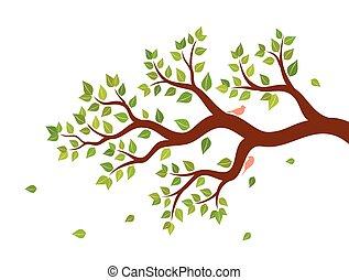 filial árvore, com, verde sai