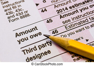 Filing Taxes and Tax Forms - Close up of words Amount you...