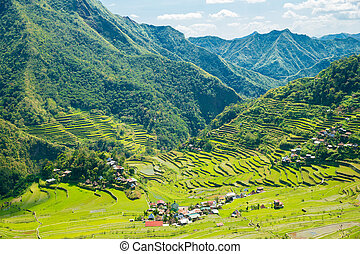 filipinas., filipinas, norte, terraces., banaue., batad, ...