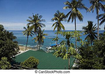 filipinas, mar, apo, isla, vista