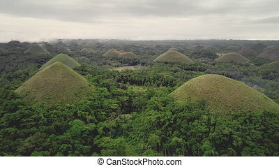 Filipino aerial shot: Chocolate Hills magnificent landmark at bird's eye view. Greenery mounts and dales at spring day with rain cloudy sky. Majestic scenery panoramic shooting in 4K, UHD