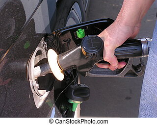 Fill it Up - Filling up the Car