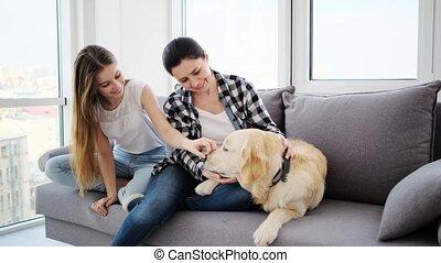 fille, chien, mère, heureux
