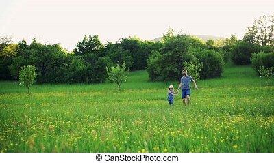 fille, pré, printemps, nature., père, courant, petit