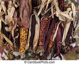 Filled frame format of seasonal corn decorations for the happy thanksgiving holiday