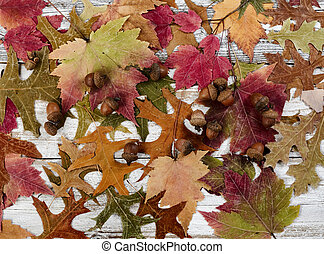 Filled frame format of seasonal leaves and acorn decorations for the happy thanksgiving holiday