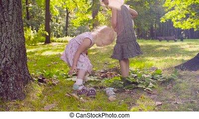 filles, parc, deux, arbre, herbe, jouer