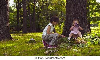 filles, parc, deux, arbres, herbe, jouer