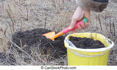 Fills a bucket with earth soil - The woman pours a small...