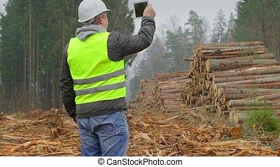 filmé, officier, journaux bord, tas, forêt
