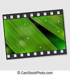 Film frame with macro leaf