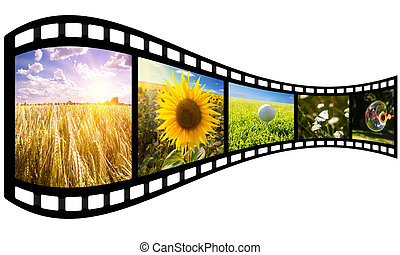 film strip with summer images