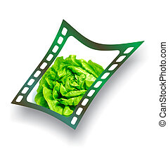 Film with fresh lettuce salad