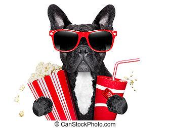 filme, hund