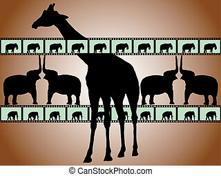 filmstrip with giraffe and elephants