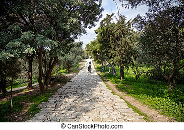 Filopappou hill, Athens, Greece. Historic landmark. Philopappos forest background. Paved path under ancient Greek Acropolis rock, between trees. Day, blue cloudy sky, people on way.