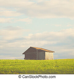 filtro, legno, effetto, capanna, campo, retro