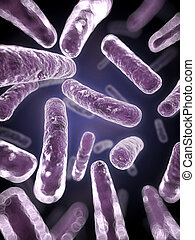 fim, bactérias, cima