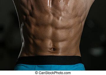 fim, músculo, abdominal, cima