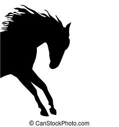 fin, häst, vektor, silhuett, svart