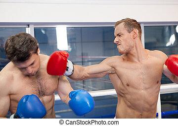 finale, punch., boxer, lochung, seine, gegner, auf, der, boxring