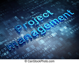 Finance concept: Blue Project Management on digital background