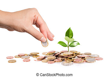 finance new business - start-up - Money and plant with hand...