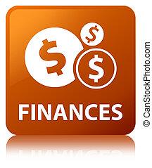 Finances (dollar sign) brown square button