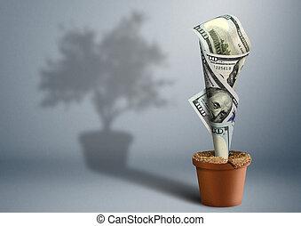 financiën, groei, creatief, concept, geld, als, boompje, in, pot
