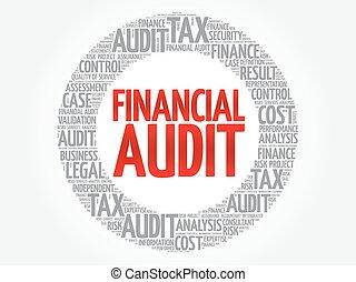 Financial Audit word cloud