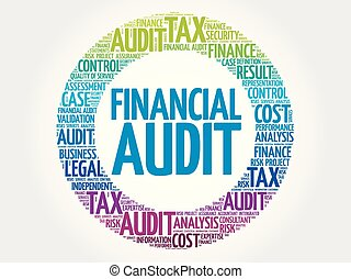 Financial Audit word cloud collage