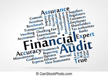 Financial Audit word cloud