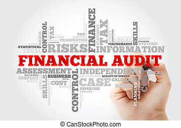 Financial Audit word cloud with marker