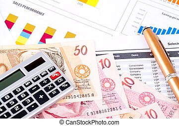 financial chart and datasheet. Brazilian money and pen.