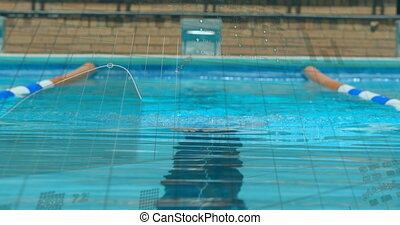 Financial data processing against male swimmer swimming in the pool