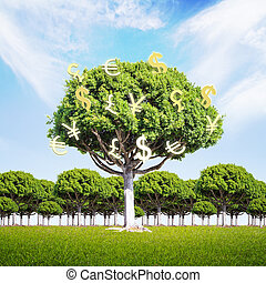 Financial growth concept money tree