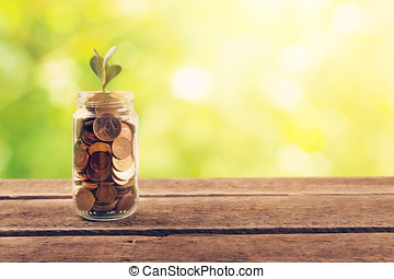 financial saving concept - plant growing out of coins