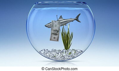 Financial shark   - Financial shark