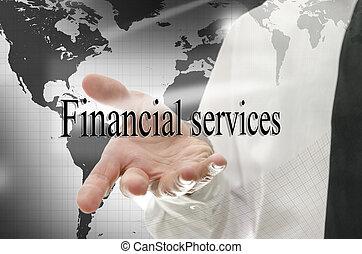 financieel, bedrijfsteken, het voorstellen, diensten, man