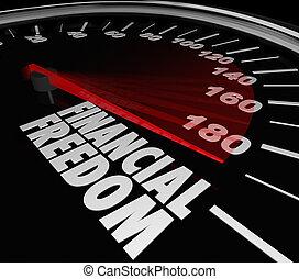 financieel, geld, inkomen, spaarduiten, vrijheid, snelheidsmeter, het verdienen